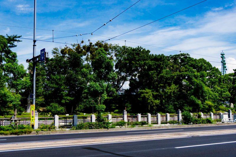 道路と緑と電線