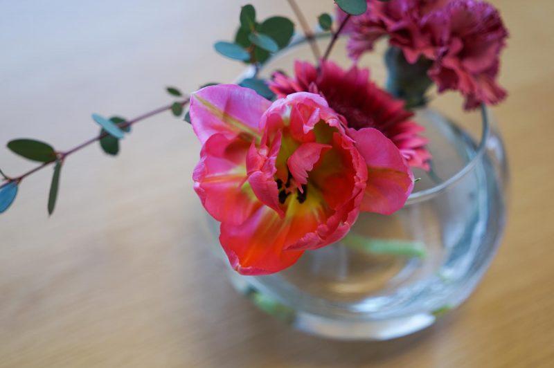 sigma単焦点で撮影した花
